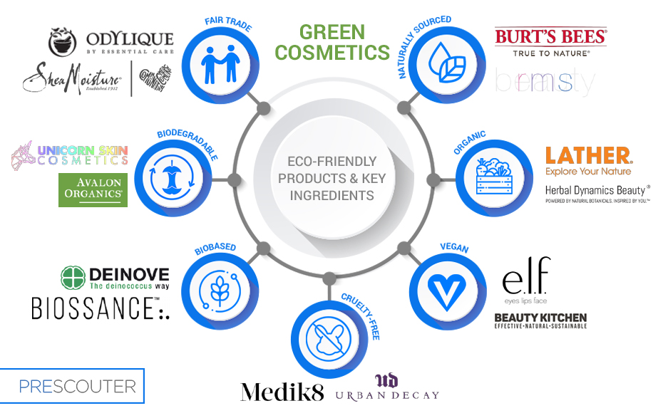 green cosmetics infographic