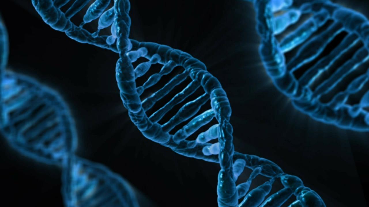 Nutrigenomics: Eat According to your Genes