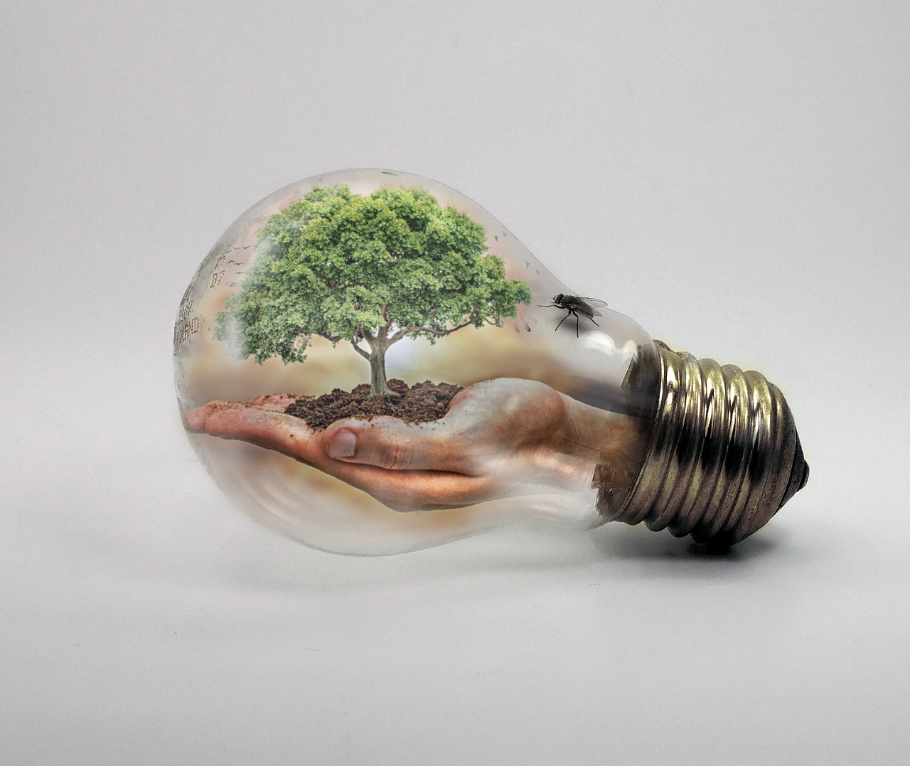 6 innovative technologies that can fight the climate crisis