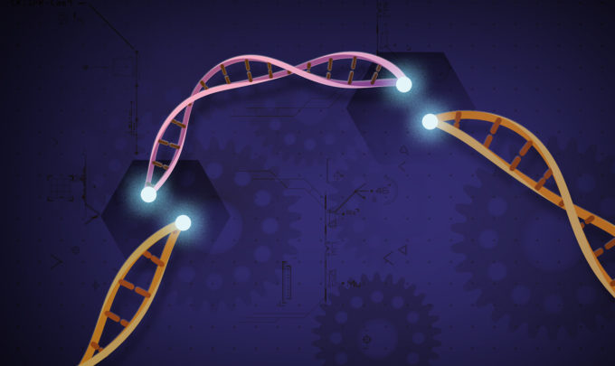 Top CRISPR breakthroughs in 2019